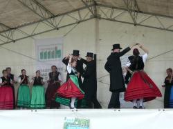 20. Mühlenfest in Borne_1